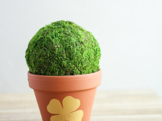 A small terracotta pot with painted 4 leaf clover