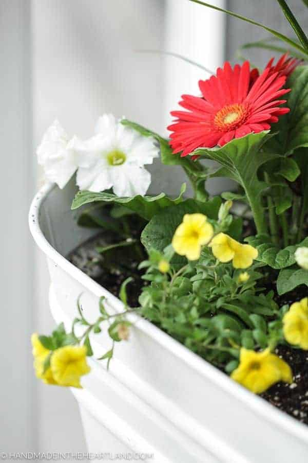 The Perfect Spring Flower Pots