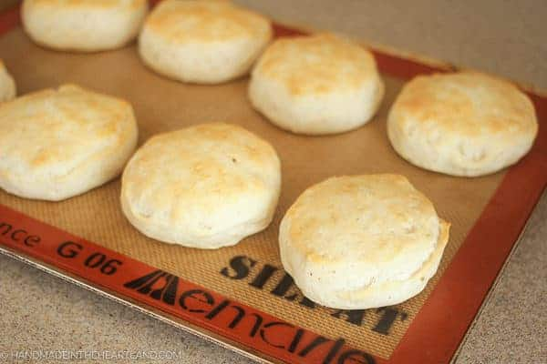 Image of biscuits for turkey a la king
