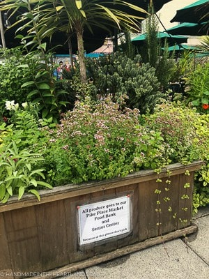 rooftop garden at Pike Place Market