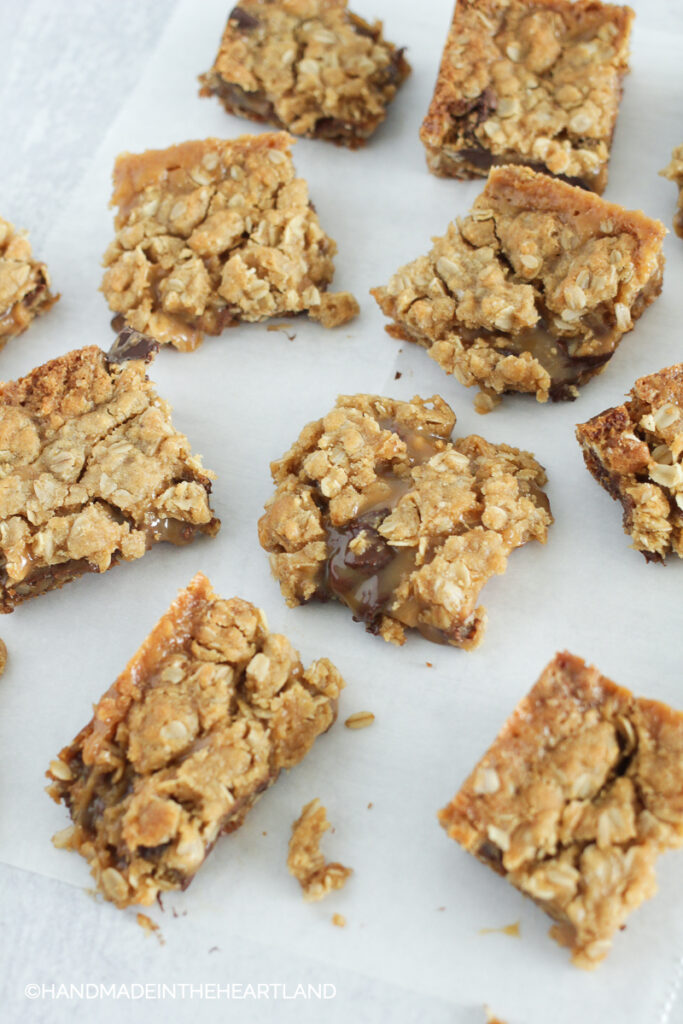 squares of salty carmelitas: cookie bars with oatmeal cookie crust, chocolate caramel center and sea salt on top